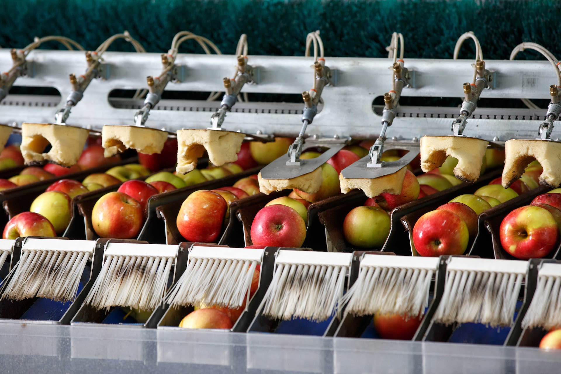 smeup soluzioni settore alimentare